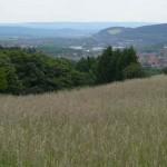 Blick v.Steinbergalm auf Goslar