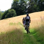 Mountainbike-Harz