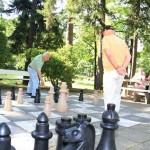 Schach-Kurpark_484ea1999f[1]